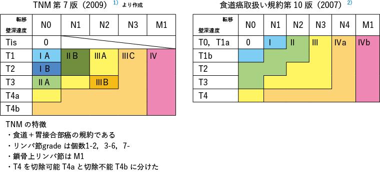 TNM 第7 版(2009)より作成 / 食道癌取扱い規約第10 版(2007)