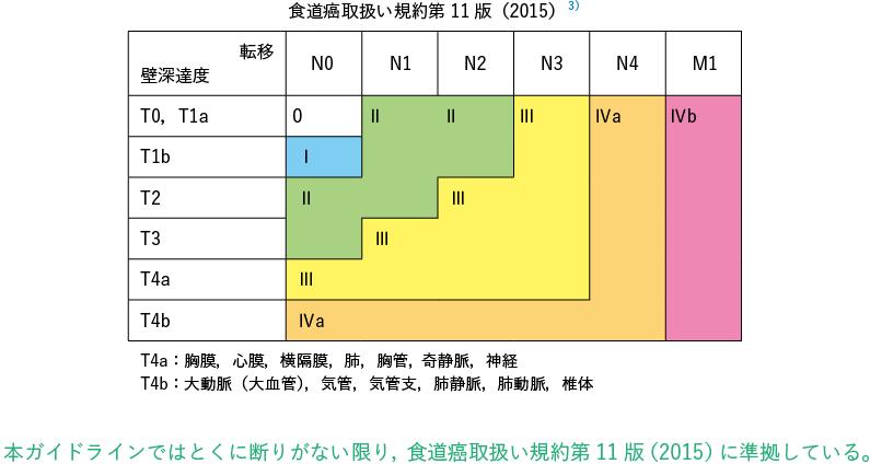 食道癌取扱い規約第11 版(2015)