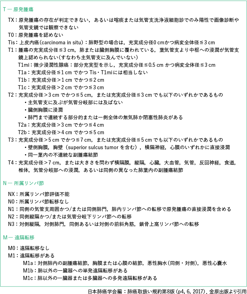 TNM 分類(8 版,2017 年)